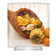 Horn Of Plenty Shower Curtain