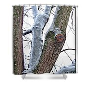 Icy View Shower Curtain