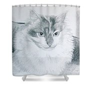 Idget Shower Curtain