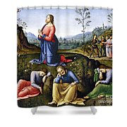 Jesus: Agony In The Garden Shower Curtain