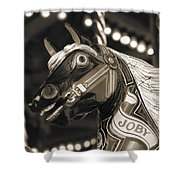 Joby The Carousel Horse Shower Curtain