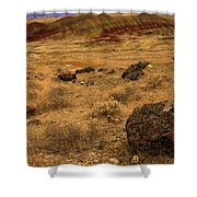 John Day Painted Hills Shower Curtain