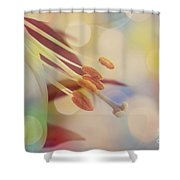 Joyfulness Shower Curtain