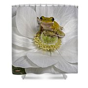 Kermit Shower Curtain
