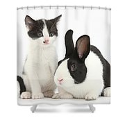 Kitten And Dutch Rabbit Shower Curtain