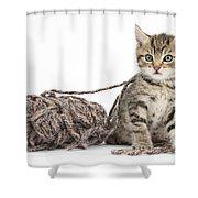 Kitten With Yarn Shower Curtain