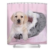 Lab In Pink Shower Curtain