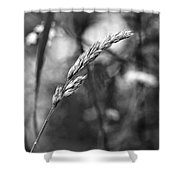 Lazy Afternoon Monochrome Shower Curtain