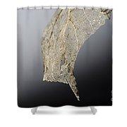 Leaf Skeleton Shower Curtain