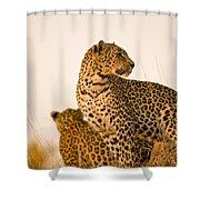 Leopard Panthera Pardus, Arathusa Shower Curtain