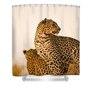 Leopard Panthera Pardus, Arathusa Shower Curtain by Stuart Westmorland