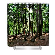Light And Shadows Shower Curtain
