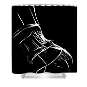 Lingerie Shower Curtain