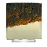 Loon In Opeongo Lake With Reflection Shower Curtain by Robert Postma