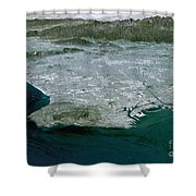 Los Angeles, California Shower Curtain