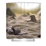Lost Time Shower Curtain
