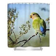 Lovebird  Shower Curtain