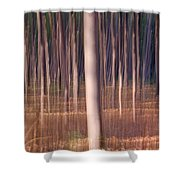 Magical Forest At Sunset Shower Curtain