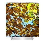 Maple Leaf Canopy Shower Curtain