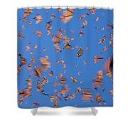 Monarch Danaus Plexippus Butterflies Shower Curtain