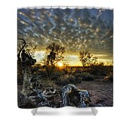 Morning Calling  Shower Curtain