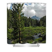 Mosquito Flats Shower Curtain
