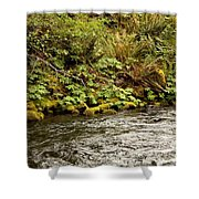 Mossy Riverbank Shower Curtain