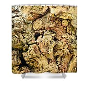 Natural Abstract 44 Shower Curtain