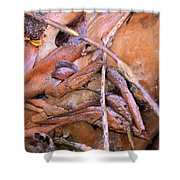 Natural Abstract 46 Shower Curtain