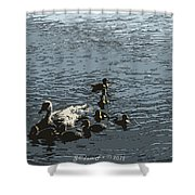 Natural Life Shower Curtain