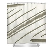 Natural Order Shower Curtain