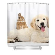 Netherland-cross Rabbit And Golden Shower Curtain