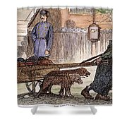 New York: Rag-picker, 1870 Shower Curtain