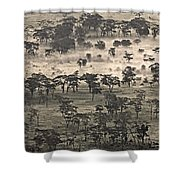Ngorongoro Crater, Tanzania, Africa Shower Curtain by Carson Ganci