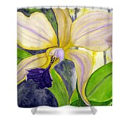 No Ordinary Orchid Shower Curtain