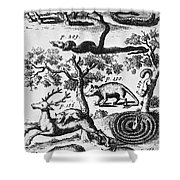 North America: Fauna Shower Curtain
