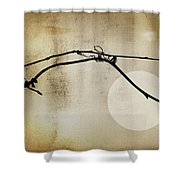 November Bones Shower Curtain