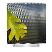 Oak Leaf Shower Curtain
