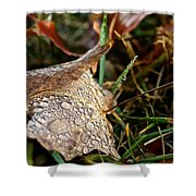 October Rain Drops Shower Curtain