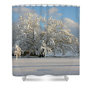 October Surprise 1872 Shower Curtain