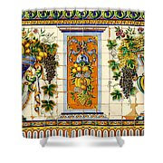Old Spanish Tiles Shower Curtain