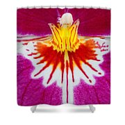 Orchid Closeup Shower Curtain