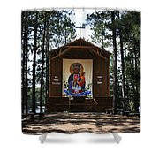 Our Lady Of Czestochowa Shower Curtain