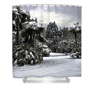 Palm Trees With Snow Shower Curtain