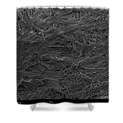 Paper Wasps Nest, Sem Shower Curtain