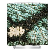 Parsons Chameleon Calumma Parsonii Shower Curtain