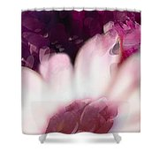 Passion Triptych 111 Shower Curtain
