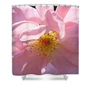 Pastel Petals Shower Curtain