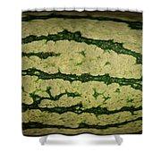 Peripheral Streak Image Of Watermelon Shower Curtain