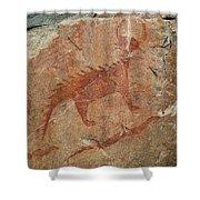 Petroglyph At Agawa Rock Shower Curtain